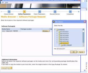 bw7 - SAP Inst Software package request