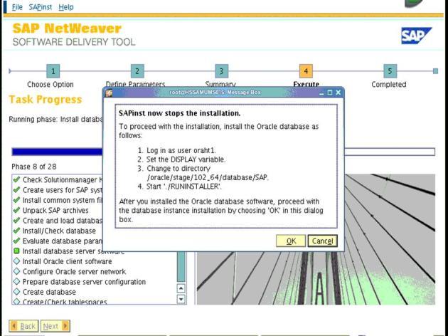 ECC6EHP4_ECC6EHP4_ECC6EHP4_Software delivery tool screen 19